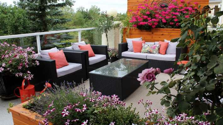 How to Start a Terrace Garden at Your Place