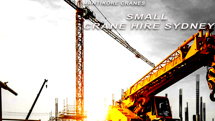 7 Ideal Reasons to go for Small Crane Hire Sydney
