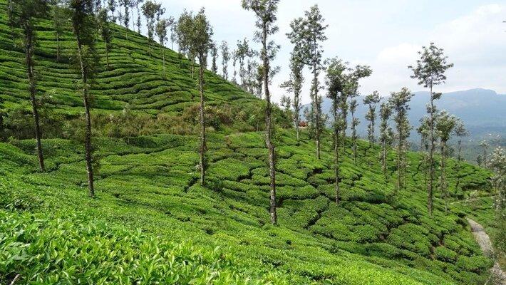 Top 5 Prime Tourist Spots in Karnataka