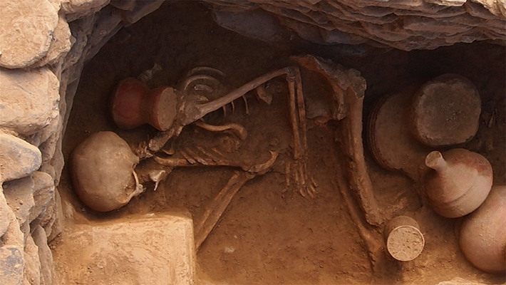 Ancient DNA Samples are Revealing all sorts of Unexpected & Controversial Findings