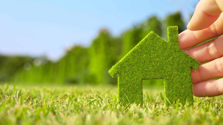 Top 5 Must Haves for a Nature Friendly Abode