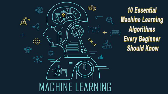 10 Essential Machine Learning Algorithms Every Beginner Should Know